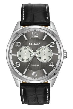 Citizen Citizen Eco-Drive  Men's Straps AO9020-17H Men's Straps